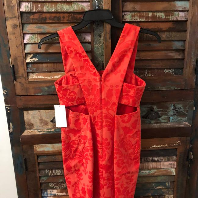 Robert Rodriguez Dress Image 4