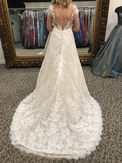 Pronovias Off White/Crystal/Lt. Beige Lace Orive Traditional Wedding Dress Size 8 (M) Image 2