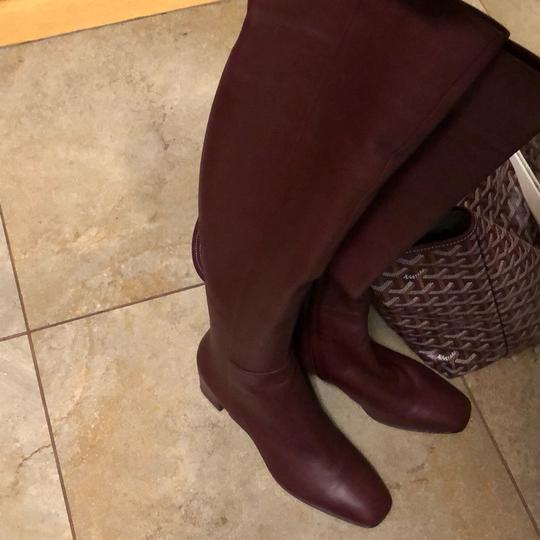 Gianvito Rossi burgundy Boots Image 1