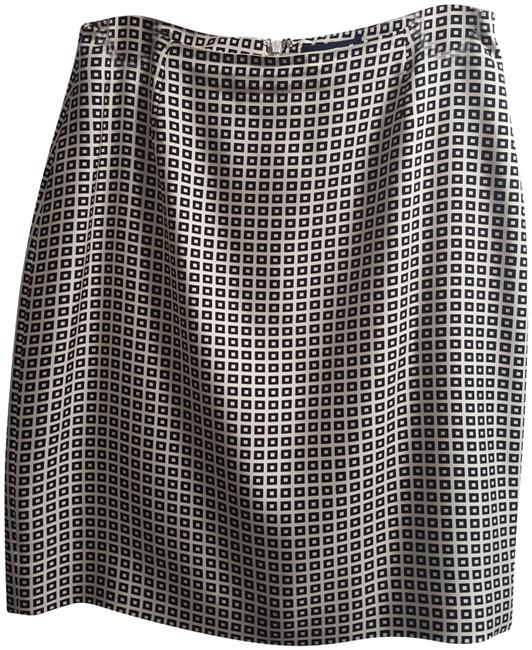 Preload https://img-static.tradesy.com/item/24328187/ann-taylor-white-and-black-casualwork-skirt-size-6-s-28-0-3-650-650.jpg
