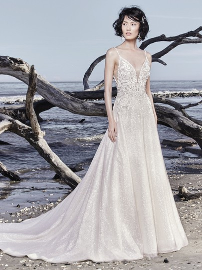 Sottero and Midgley Ivory Over Champagne Shimmer Beaded Lace Tulle Chad Modern Wedding Dress Size 8 (M) Image 7