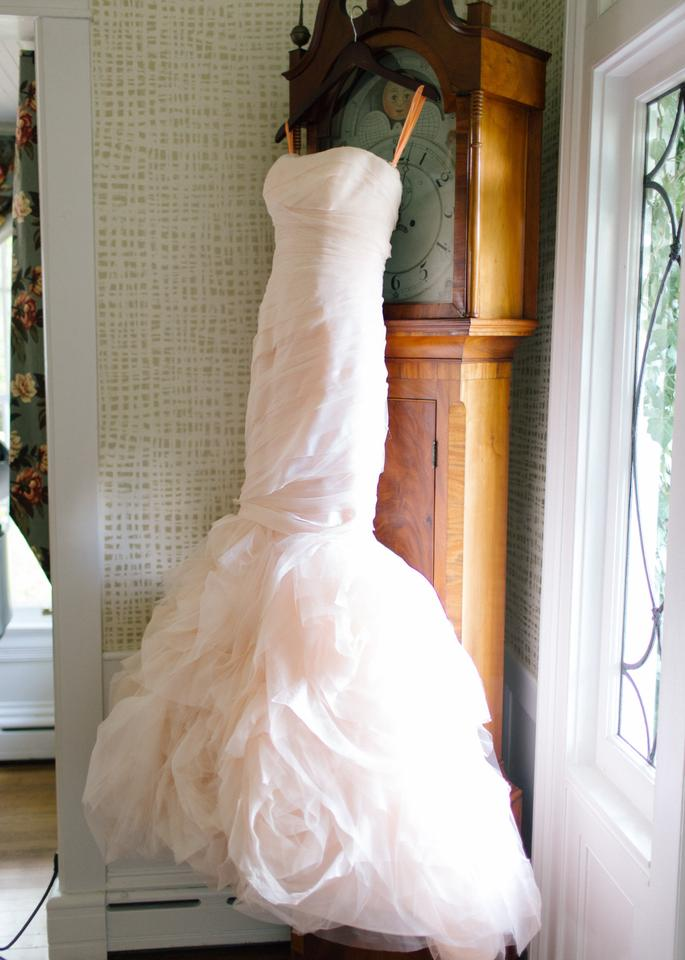 5dce1f250a67 Vera Wang Blush Tulle Gemma Formal Wedding Dress Size 2 (XS) Image 0 ...
