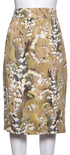Preload https://img-static.tradesy.com/item/24360561/dolce-and-gabbana-tan-dolce-and-gabbana-off-white-and-green-floral-print-skirt-size-8-m-29-30-0-1-650-650.jpg
