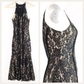 Keepsake the Label Lace Mermaid Lace High Neck Lace Lace Fitted Dress Image 3