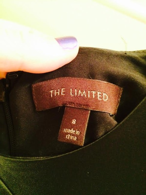 The Limited (Worn Once) Dress Image 2