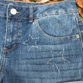 Authentic American Heritage Cuffed Shorts Blue Image 4