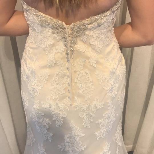 Stella York Ivory Lace Overlay Over Gold Lining and 6119dmzp Formal Wedding Dress Size 8 (M) Image 2