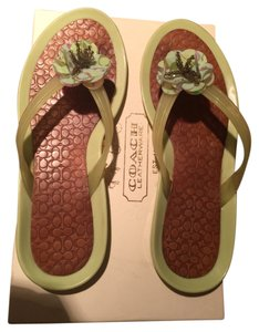 Coach Light Green Sandals