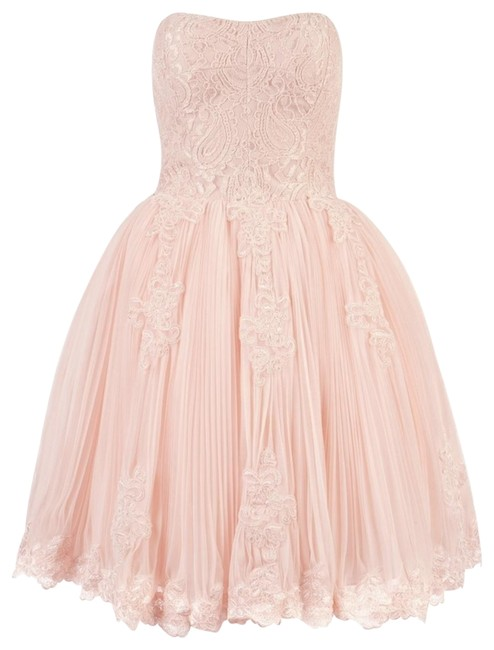 Ted Baker Bridesmaid Bridal Prom Blush Wedding Dress Image 1