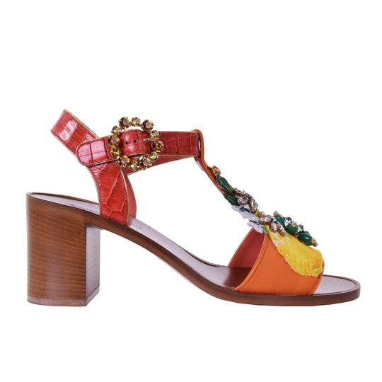 Preload https://img-static.tradesy.com/item/24499673/dolce-and-gabbana-dolce-and-gabbana-embroidered-jeweled-sandals-orange-pumps-size-us-9-regular-m-b-0-0-540-540.jpg