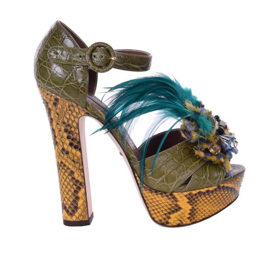 Preload https://img-static.tradesy.com/item/24499717/dolce-and-gabbana-dolce-and-gabbana-crocodile-skin-sandals-with-brooch-green-pumps-size-us-9-regular-0-0-540-540.jpg