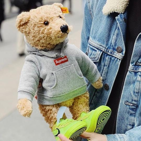 Supreme Extremely Rarely Limited Edition Box Logo Hood Steiff Teddy Bear