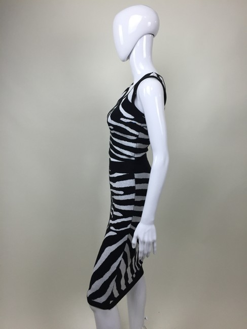 Other And Pencil Skirt Zebra Print Dress Image 1