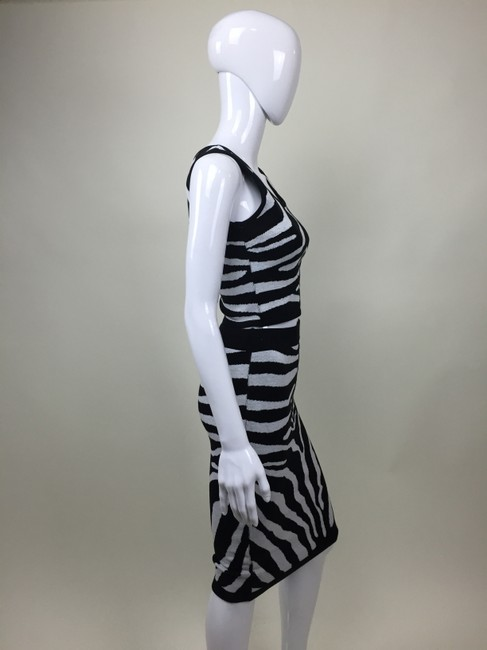 Other And Pencil Skirt Zebra Print Dress Image 3