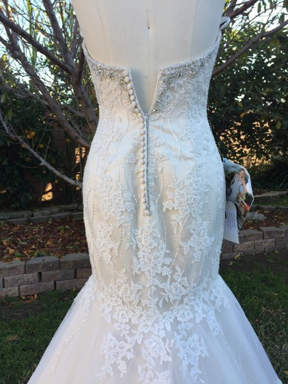 KittyChen Couture Light Gold and Ivory Beaded Lace Phaedra H1718 Sexy Wedding Dress Size 4 (S) Image 3