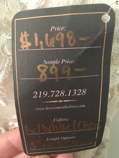 Maggie Sottero Champagne/Pewter Accent Lace Reynold Feminine Wedding Dress Size 14 (L) Image 9