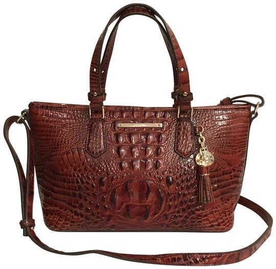 Preload https://img-static.tradesy.com/item/24632535/brahmin-mini-asher-melbourne-convertible-brown-gold-leather-satchel-0-1-540-540.jpg