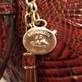 Brahmin Purse Handbag Tote Cross Body Shoulder Satchel in Brown Gold Image 5