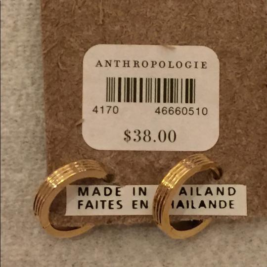 Anthropologie Anthropologie beautiful earring Image 2