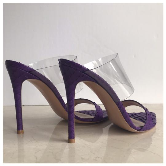 Gianvito Rossi Purple Mules Image 4