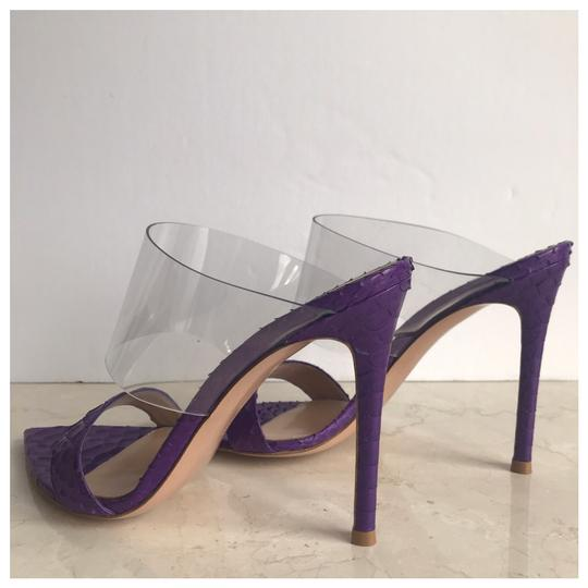 Gianvito Rossi Purple Mules Image 5