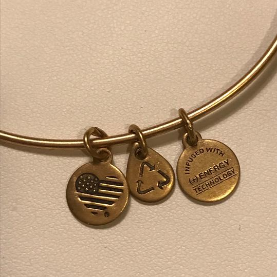 Alex + Alex Alex and Ani US Army Bracelet Image 2