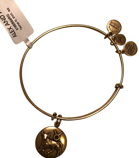 Preload https://img-static.tradesy.com/item/24768449/alex-alex-gold-and-ani-taurus-iii-bracelet-0-1-540-540.jpg