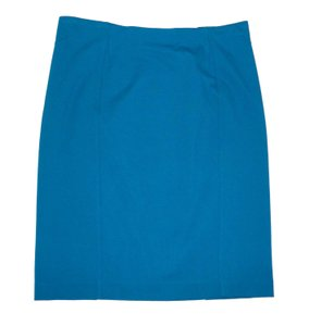 276499ca9c Women's Blue Ann Taylor Skirts - Up to 90% off at Tradesy