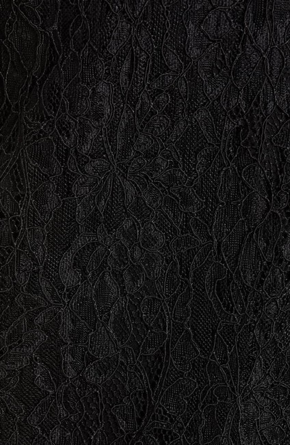 Lewit Lace Sheer Skirt Black Image 4