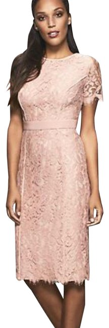 Item - Nude/Peach Romina Lace Mid-length Work/Office Dress Size 6 (S)