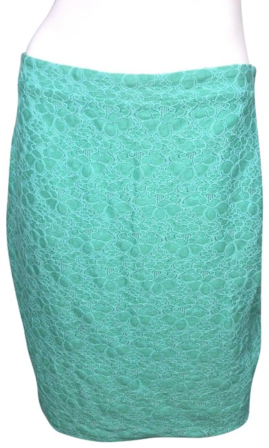 Preload https://img-static.tradesy.com/item/24847071/thalia-sodi-green-straight-skirt-size-8-m-29-30-0-1-650-650.jpg