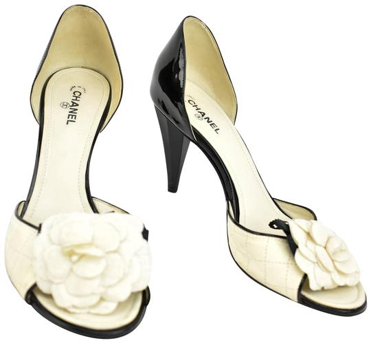 Preload https://img-static.tradesy.com/item/24851438/chanel-blackoff-white-leather-and-camellia-heels-pumps-size-eu-385-approx-us-85-regular-m-b-0-1-540-540.jpg
