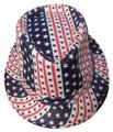 unknown Red-White-Blue Fedora Image 0