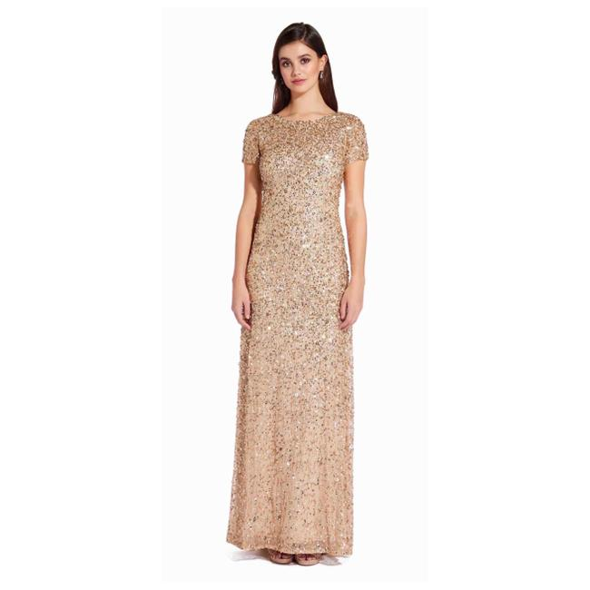 Preload https://img-static.tradesy.com/item/24925623/adrianna-papell-beaded-short-sleeves-scoop-back-gown-long-formal-dress-size-8-m-0-0-650-650.jpg