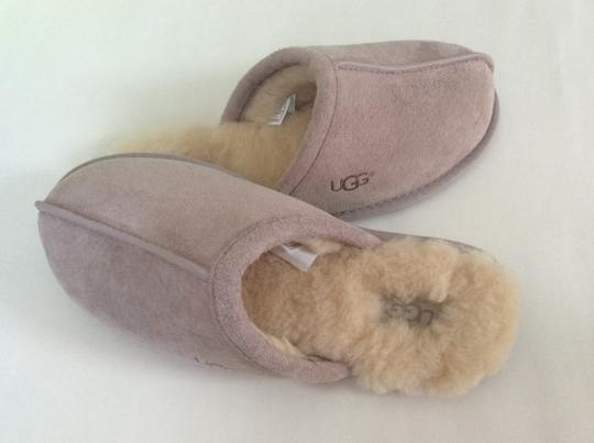 UGG Australia New With Tags Feather / Light Lavender Flats Image 3