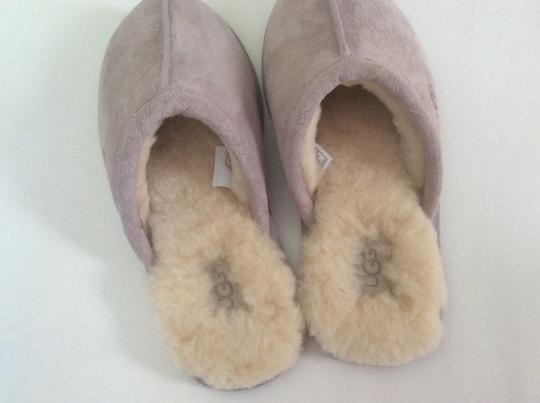 UGG Australia New With Tags Feather / Light Lavender Flats Image 4