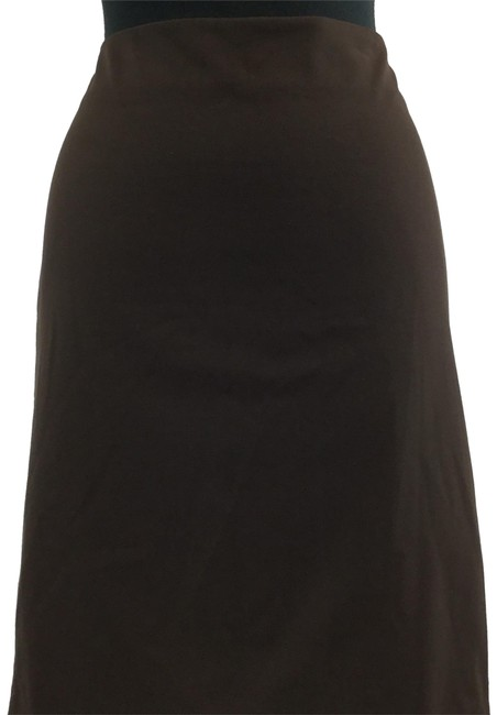 Preload https://img-static.tradesy.com/item/25029769/talbots-brown-skirt-size-petite-10-m-0-1-650-650.jpg
