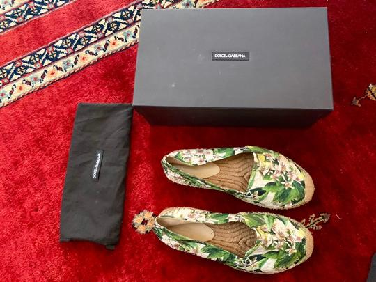 Dolce&Gabbana Pink cherry blossom with green background Flats Image 1