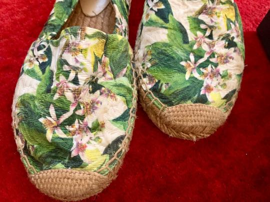 Dolce&Gabbana Pink cherry blossom with green background Flats Image 4