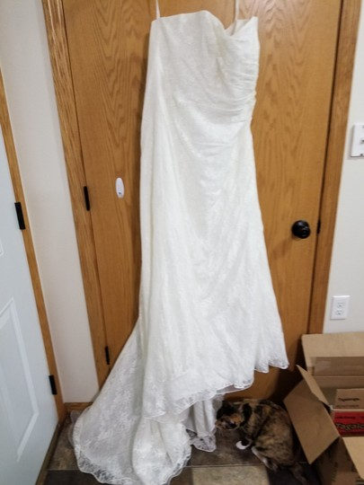 David's Bridal Ivory Polyester Allover Lace A Line Strapless Modest Wedding Dress Size 16 (XL, Plus 0x) Image 3