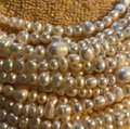 Saks Fifth Avenue Freshwater Multi Strand Pearl Necklace From Saks Fifth Avenue Image 3