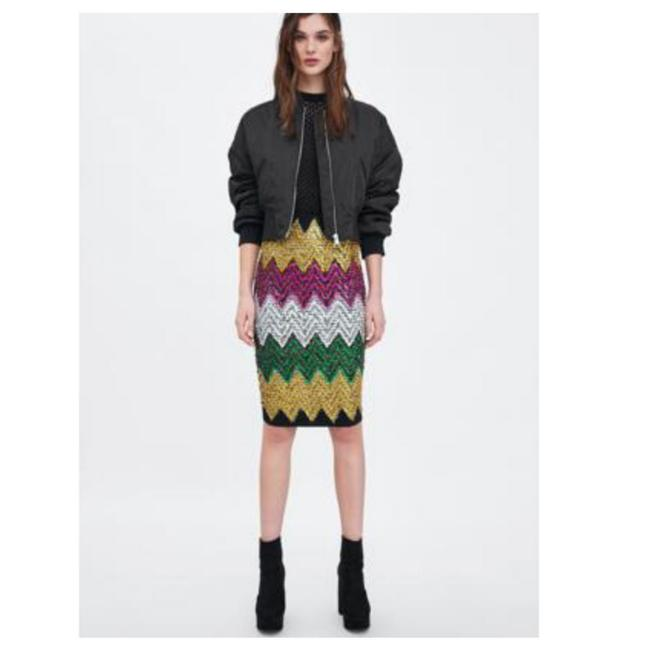 Zara Skirt Multicolored Image 1