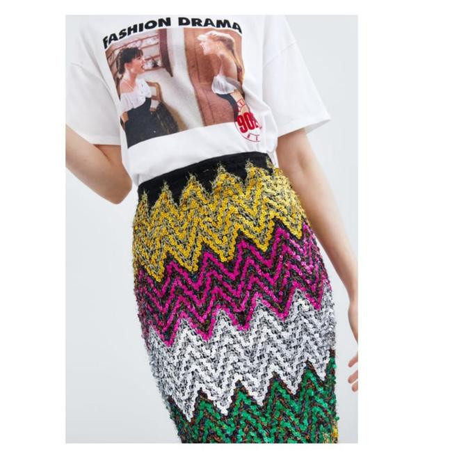 Zara Skirt Multicolored Image 3