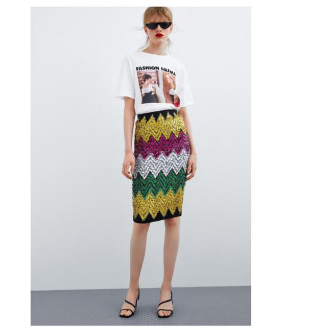 Zara Skirt Multicolored Image 4
