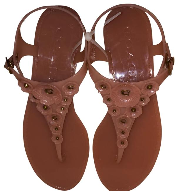 Tea Rose Sandals Size US 11 Regular (M, B) Tea Rose Sandals Size US 11 Regular (M, B) Image 1