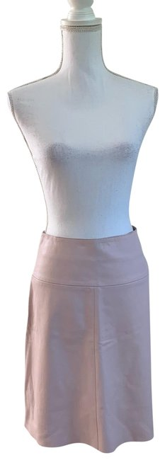 Preload https://img-static.tradesy.com/item/25184595/valentino-pink-blush-leather-a-line-skirt-size-4-s-27-0-1-650-650.jpg