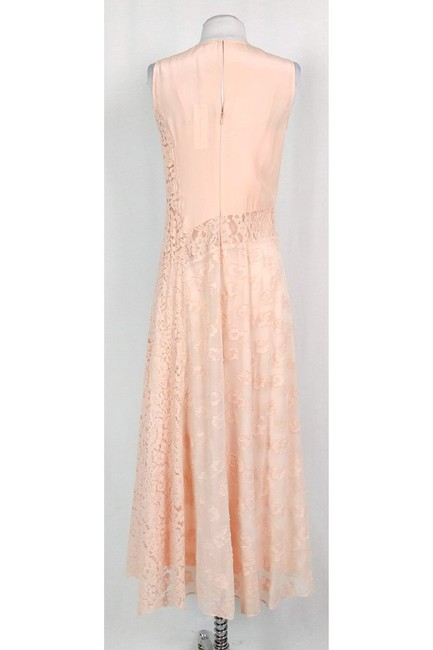 pink Maxi Dress by Rebecca Taylor Blush Lace Maxi Image 2
