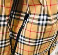 Burberry antique yellow check Jacket Image 5