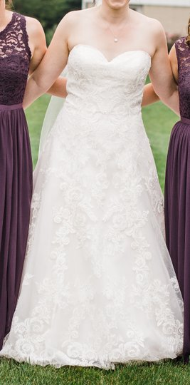 Pink Champagne/Ivory/Sand 4024d Traditional Wedding Dress Size 10 (M) Image 4