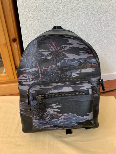 Coach Backpack Image 1